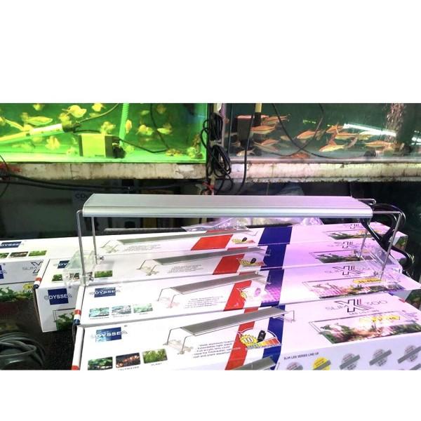 Đèn led odyssea Slim X600 ánh sáng 10000k chuyên dụng cho bể thủy sinh, bể cá cảnh