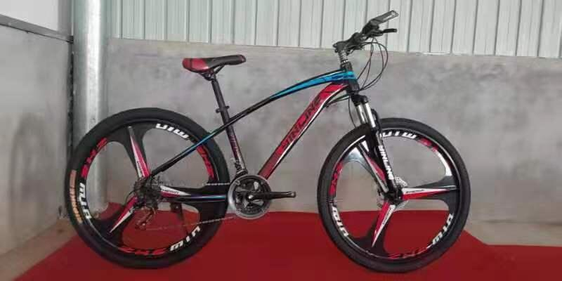 Mua xe đạp thể thao vành đúc cho người lớn