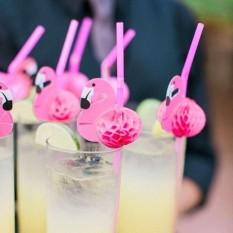 Hình ảnh 10pcs Funny Bird Drinking Straws Tropical Hawaiian Beach Barware Party Favors - intl
