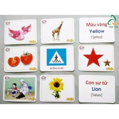 Hình ảnh Bộ 416 Thẻ Học Tiếng Anh Thông Minh Flashcard Cho Bé yêu