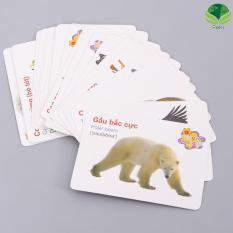Hình ảnh Bộ thẻ học anh ngữ và nhận biết đồ vật cho bé ( 416 thẻ )