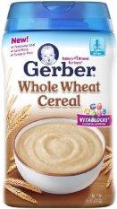 Ôn Tập Bột Ăn Dặm Gerber Cereal Whole Wheat 227G