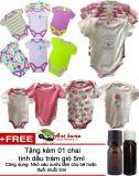 Mua Combo 5 Ao Liền Quần Body Suite Baby Gear Cho Be Gai Từ 3 Thang Mầu Sắc Bất Ki Tặng 01 Chai Tinh Dầu Tram Gio 5Ml Trực Tuyến