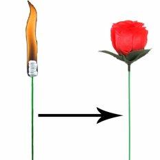 Hình ảnh Đạo cụ ảo thuật:Ngọn đuốc biến kỳ ảo thành bông hoa hồng