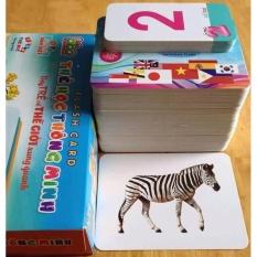 Hình ảnh FlashCard - Thẻ học về Thế giới xung quanh (12 chủ đề - Kích thước 12*16cm)