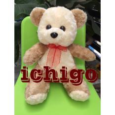 Gấu Bông Teddy Cao Cấp Size 30cm Hàng Vnxk By Ichigo Shop.