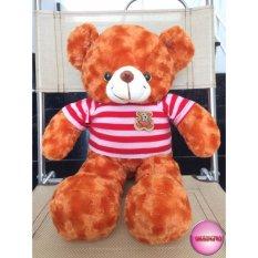 Hình ảnh Gấu Bông Teddy Cao Cấp Size 50Cm Vnxk
