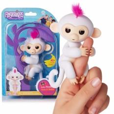 Hình ảnh Khỉ bám ngón tay Fingerlings Monkey