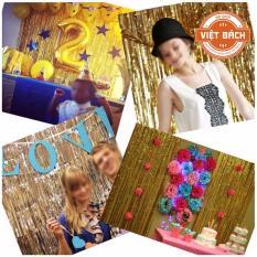 Hình ảnh Rèm trang trí các bữa tiệc (Dài 2m, Rộng 1m)