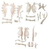 Bán Triceratops Stegosaurus Trex Dinosaur Fossil Skeleton Figure Loose Parts Diy Intl Vietnam