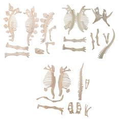 Giá Bán Triceratops Stegosaurus Trex Dinosaur Fossil Skeleton Figure Loose Parts Diy Intl Rẻ