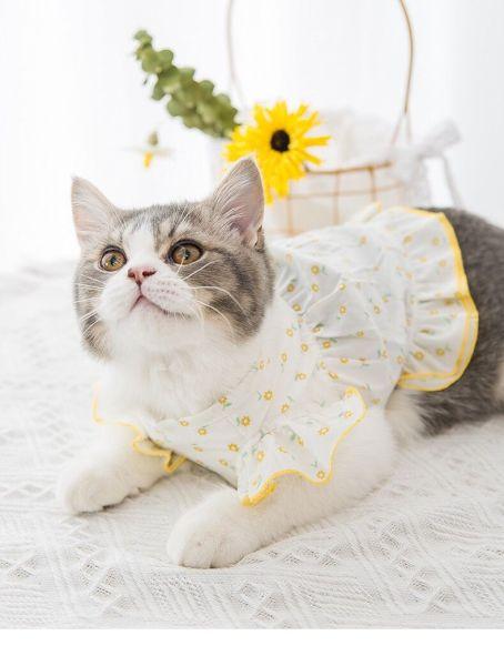 Váy giá rẻ dành cho mèo và chó - áo váy tay cánh tiên nền trắng hoa cúc vàng nhỏ cho thú cưng