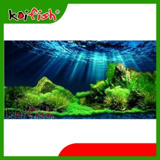 Tranh 3D Koifish, Aqb20-359, độc đáo, ấn tượng 120x60, 120x50, 150x50 cm thumbnail