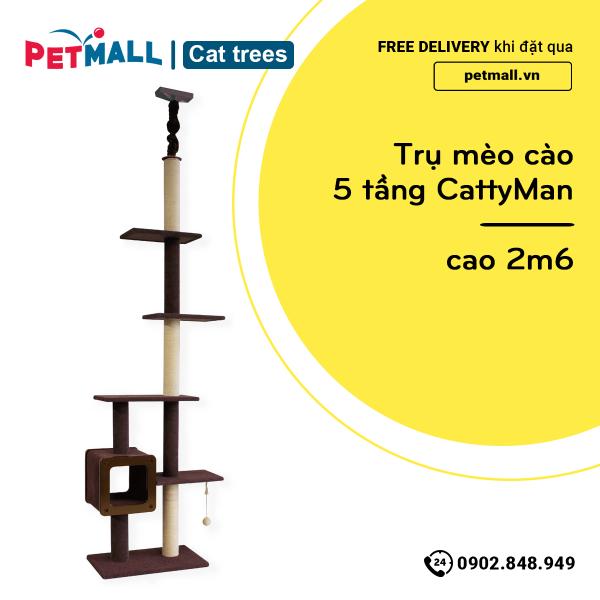 Trụ mèo cào 5 tầng CattyMan - cao 2m6 petmall