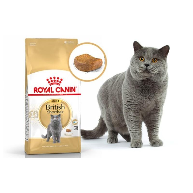 2kg Hạt Royal Canin British Shorthair Adult dành cho mèo Anh Lông Ngắn trên 12 tháng tuổi