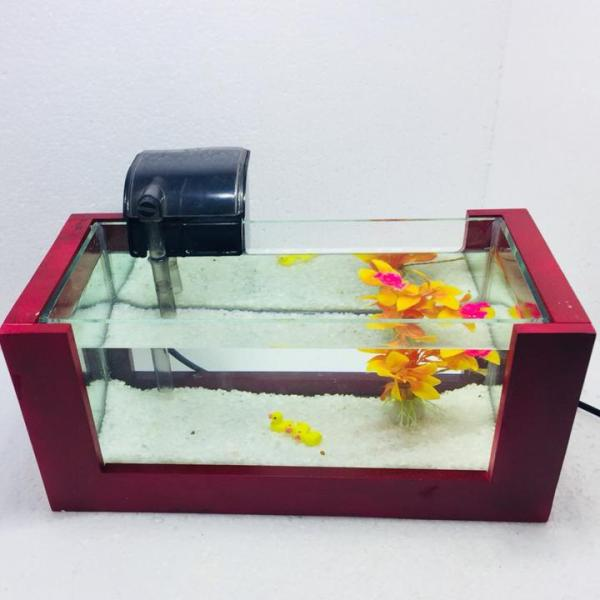 Bể cá mini để bàn khung gỗ có lọc nước