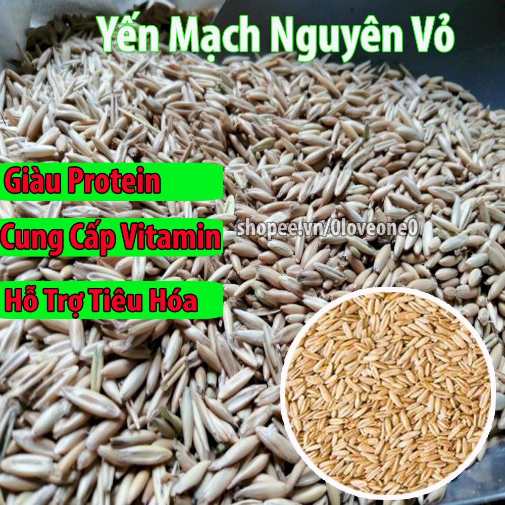 500g Hạt Yến Mạch Nguyên Vỏ giàu dinh dưỡng cho Vẹt-Chim-Gà