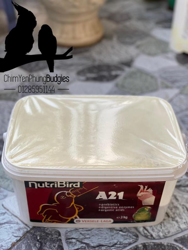 200GRAM BỘT NUTRI A21 giàu dinh dưỡng cho vẹt non XUẤT XỨ: BỈ