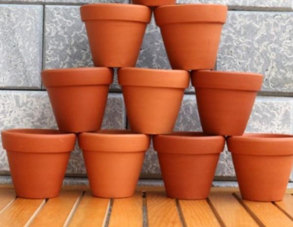 10chậu đất nung trồng sen đá size 7*7 giá 100k