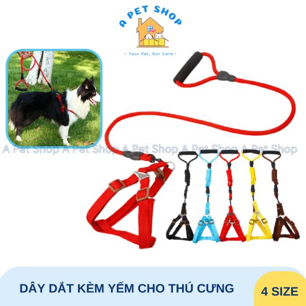 [Có clip] Dây dắt chó mèo dạng yếm có tay cầm - Dây dắt chó mèo cao cấp A Pet Shop