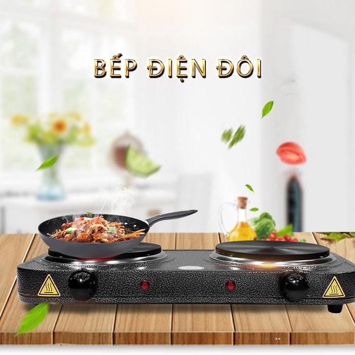 Giá Bếp điện đôi Hasu- BD101