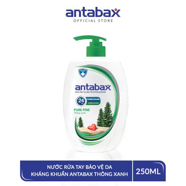 Nước Rửa Tay Bảo Vệ Da Kháng Khuẩn Antabax Pure Pine Thông Xanh 250ml giá rẻ
