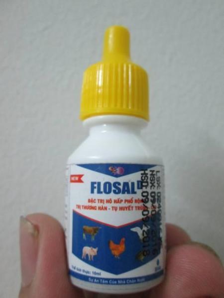 FLOSAL-D - Đặc trị bệnh Tổng hợp Hô hấp, thương hàn, Tụ huyết trùng..
