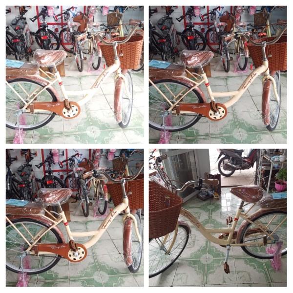 Mua xe đạp mini việt nhật giá rẻ