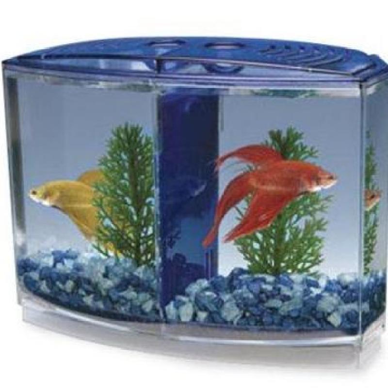 Bể Cá Beta Mini - Hồ Cá Mini Để Bàn Bằng Nhựa Cao Cấp 2 Ngăn