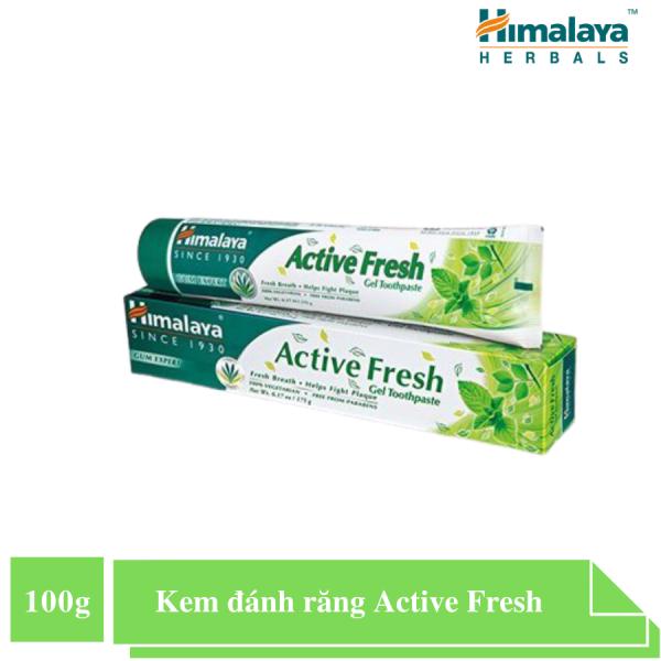 (Gift test) Kem đánh răng bảo vệ nướu giúp hơi thở thơm mát - Himalaya Active Fresh Herbal Toothpaste 100 g HSD 31/10/2021 giá rẻ