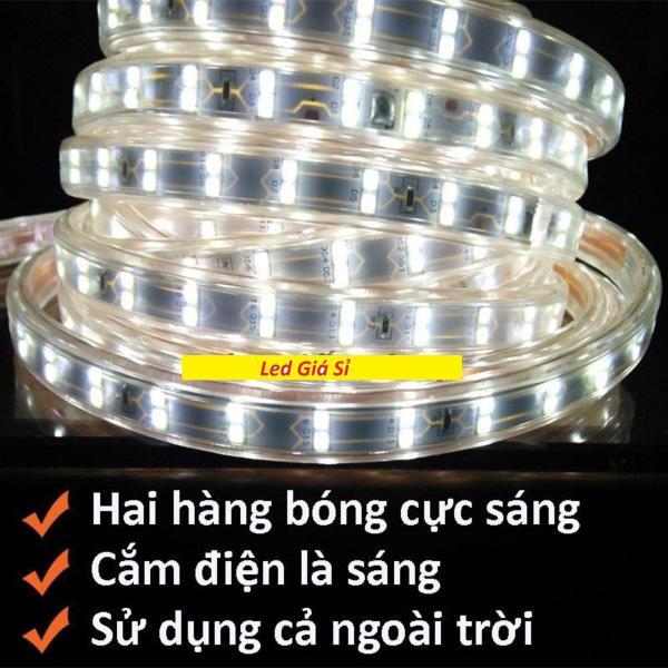 Đèn led dây đôi 2835 10m 220v tặng kèm 1 dây nguồn tốt