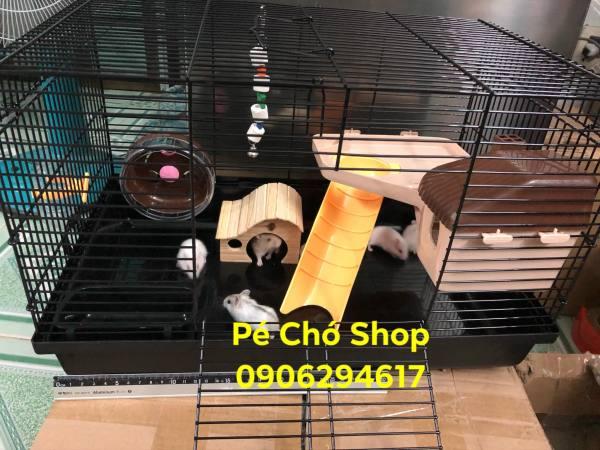 Lồng hamster full phụ kiện BigSize cho hamster (y hình)