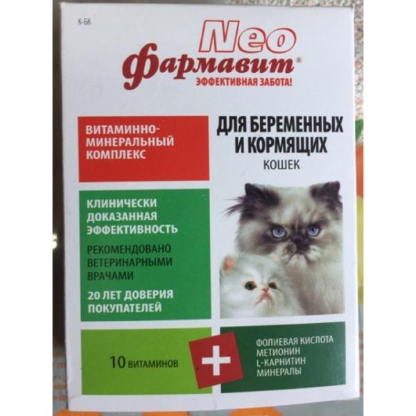 Vitamin dành cho mèo bầu và mèo đang cho con bú