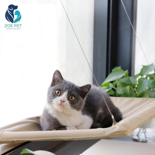 Giường ngủ gắn cửa kính cho mèo, giúp mèo nằm thư giãn thoải mái, ngủ ngon