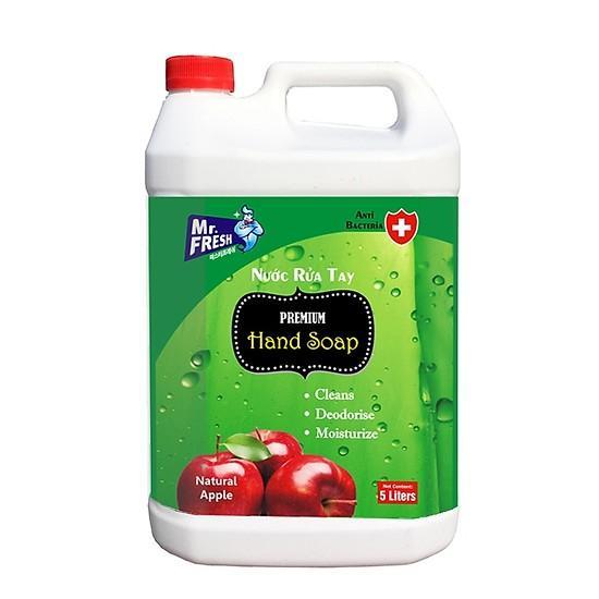 Nước rửa tay khử mùi Hàn quốc Mr.Fresh 5L Hương Táo GSG431