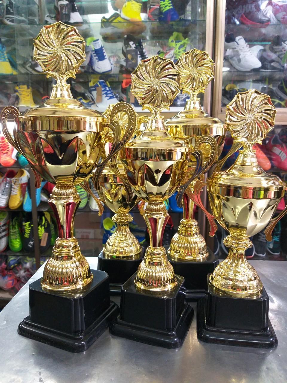 Cơ Hội Giá Tốt Để Sở Hữu Cup Vô địch VS01