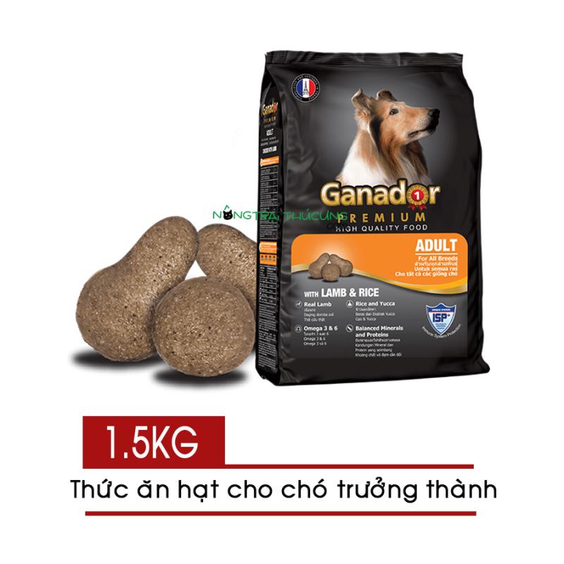 Thức Ăn Hạt Cho Chó Lớn Ganador Adult 1.5Kg , Vị Cừu Và Gạo Thơm Ngon Hấp Dẫn, Đảm Bảo Đầy Đủ Dinh Dưỡng Thiết Yếu cho Cún Yêu