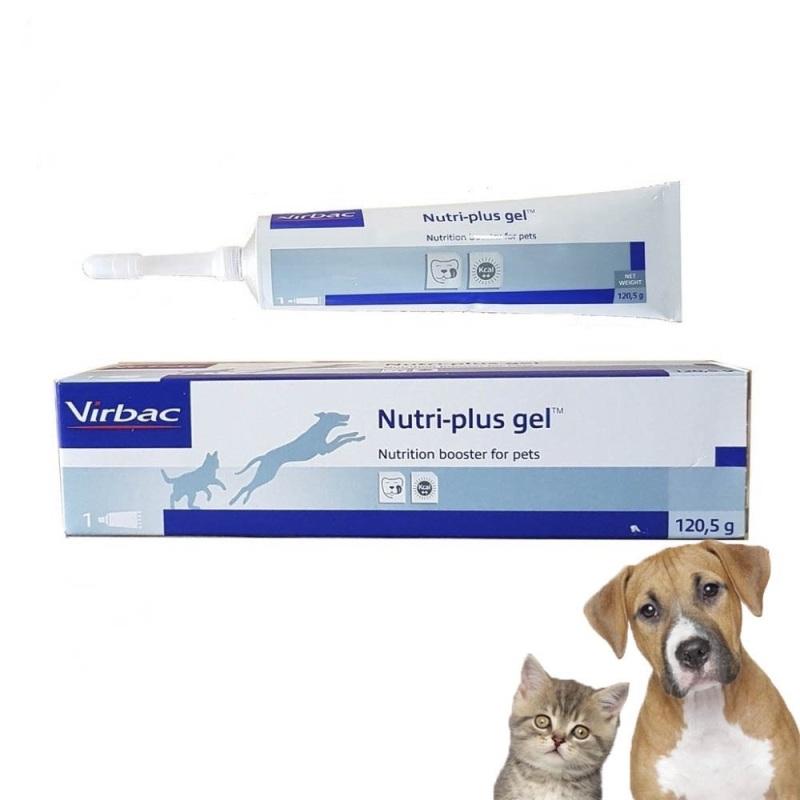 Gel Dinh Dưỡng cho Chó Mèo Nutri-Plus