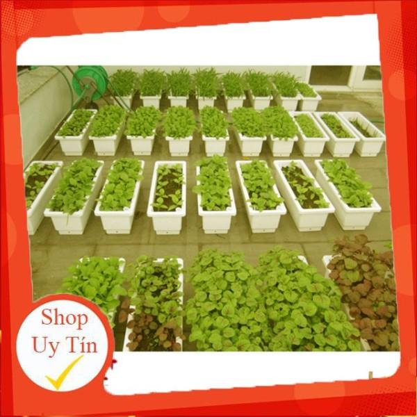 Bán combo 5 chậu chữ nhật thông minh 48cm (chậu chữ nhật trồng rau trồng hoa) nguyên seal, chất lượng đảm bảo an toàn đến sức khỏe người sử dụng, cam kết hàng đúng mô tả