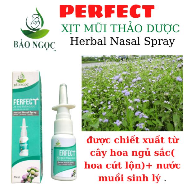 Xit mũi thảo dược Perfect (10ml)  làm sạch khoang mũi chống bụi bần ,hỗ trợ trị viêm xoan ,viêm mũi dị ứng , tinhdauQT-shop ,39k