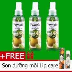 Bộ 3 chai tinh dầu bưởi xịt tóc pomelo Cocoon (130ml x 3) tặng 1 son dưỡng môi Lip Care