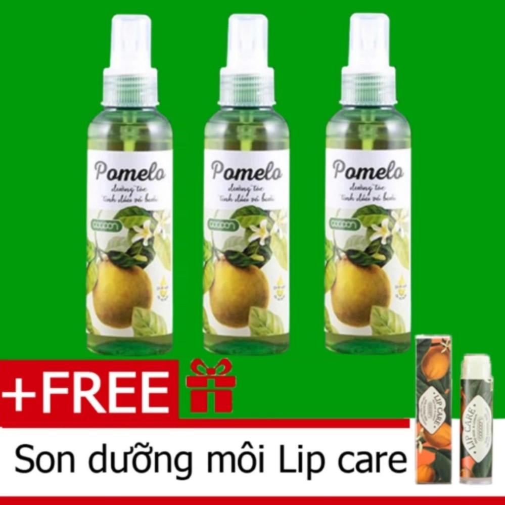 Hình ảnh Bộ 3 chai tinh dầu bưởi xịt tóc pomelo Cocoon (130ml x 3) tặng 1 son dưỡng môi Lip Care