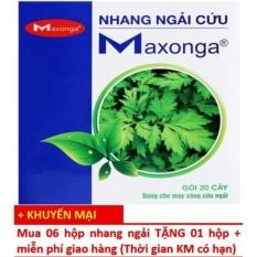 Giá Bán Bộ 7 Hộp 20 Điếu Nhang Ngải Cứu Maxonga Mua 06 Tặng 01 Nguyên