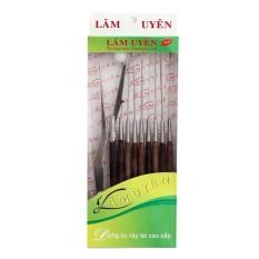 Hình ảnh Bộ dụng cụ lấy ráy tai Lâm Uyên inox chuyên nghiệp 10 món