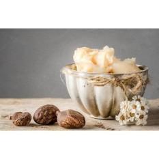 Hình ảnh 50g Bơ hạt mỡ_shea butter_nguyên liệu làm mỹ phẩm handmade