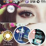 Bán Bộ Lens 6 Thang Cid Brown Nau Tay 1 Chai Ngam Rửa Lens 120Ml Có Thương Hiệu Rẻ