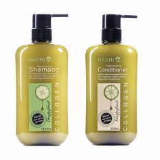 Cặp dầu Gội và Xả HACHI dành cho tóc gãy rụng chiết xuất Bưởi & Biotin (500ml x 2)