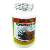 Đong Trung Hạ Thảo Cordyceps 950 30 Vien Dong Trung Ha Thao Chiết Khấu 50