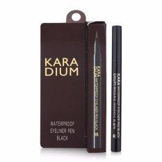 Giá Bán Kẻ Mắt Nước Karadium Waterproof Pen Black 8G Karadium Vietnam