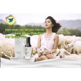 Kem Nhau Thai Cừu Cao Cấp Phi Thanh Van Phi Thanh Vân Chiết Khấu 30